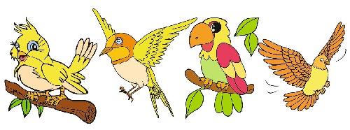 وکتور پرنده-وکتور طوطی-وکتور کبوتر-وکتور قناری-فایل  کورل
